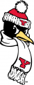 Youngstown State Penguins 1993-Pres Alternate Logo 02 decal sticker