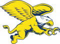 Canisius Golden Griffins 1999-2005 Secondary Logo 02 decal sticker