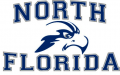 UNF Ospreys 2010-2013 Primary Logo decal sticker