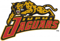 IUPUI Jaguars 1998-2007 Alternate Logo iron on transfer