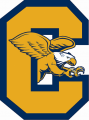 Canisius Golden Griffins 2006-Pres Alternate Logo decal sticker