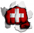 hulk switzerland flag decal sticker