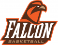 Bowling Green Falcons 2006-Pres Misc Logo iron on transfer