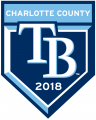 Tampa Bay Rays 2018 Event Logo iron on transfer