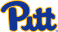 Pittsburgh Panthers 2019-Pres Primary Logo iron on transfer