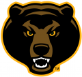 Baylor Bears 2005-2018 Alternate Logo 07 iron on transfer