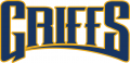 Canisius Golden Griffins 2006-Pres Wordmark Logo 02 decal sticker