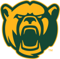 Baylor Bears 2005-2018 Alternate Logo 09 iron on transfer