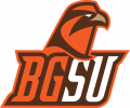 Bowling Green Falcons 2006-2011 Alternate Logo 06 iron on transfer