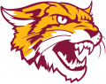 Bethune-Cookman Wildcats 2016-Pres Alternate Logo decal sticker