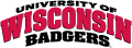 Wisconsin Badgers 2002-Pres Wordmark Logo iron on transfer