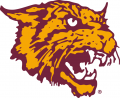 Bethune-Cookman Wildcats 2000-2015 Alternate Logo decal sticker