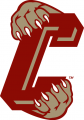 College of Charleston Cougars 2003-2012 Secondary Logo decal sticker