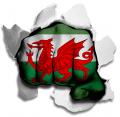hulk Wales Flag decal sticker