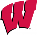 Wisconsin Badgers 1991-Pres Primary Logo decal sticker