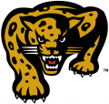 IUPUI Jaguars 1998-2007 Secondary Logo 02 iron on transfer