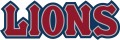 Loyola Marymount Lions2008-2018 Wordmark Logo 02 iron on transfer