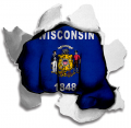 hulk Wisconsin State Flag iron on transfer