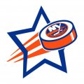New York Islanders Hockey Goal Star