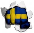 hulk SWEDEN Flag decal sticker