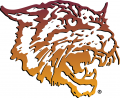 Bethune-Cookman Wildcats 2000-2015 Primary Logo decal sticker