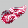 Detroit Red Wings Stainless steel logo iron on transfer